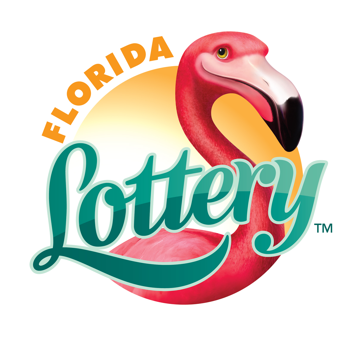 florida lottery numbers powerball photo - 1